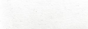 OKカイゼル(白)のカラーイメージです。