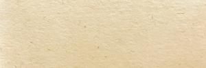 OKカイゼル(象牙)のカラーイメージです。