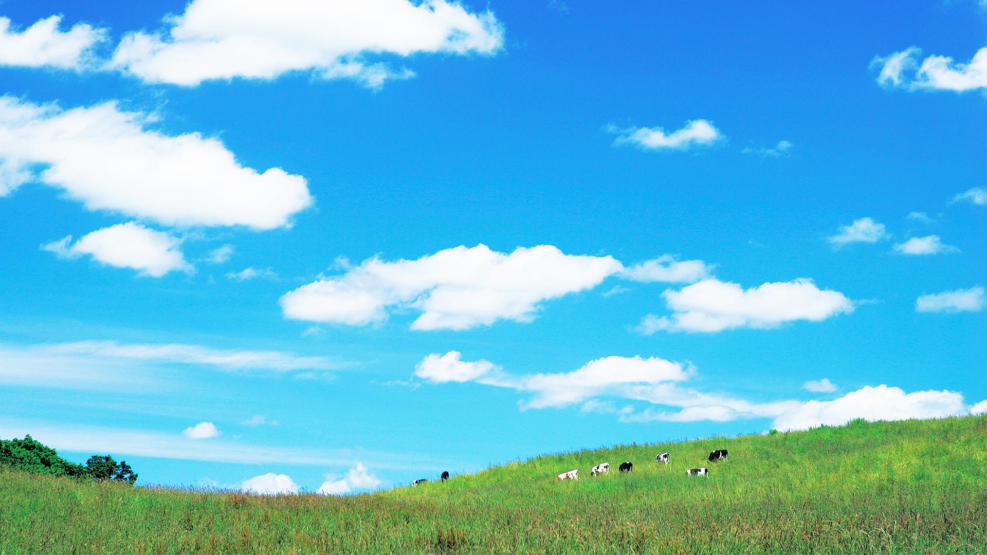 高原のバーチャル背景画像です。